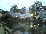 公園の池③
